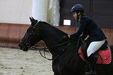 Лошадь для побед в аренду, Москва