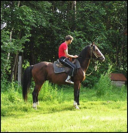 ...прошу простить этакую посадку восседающего на коне - турист...