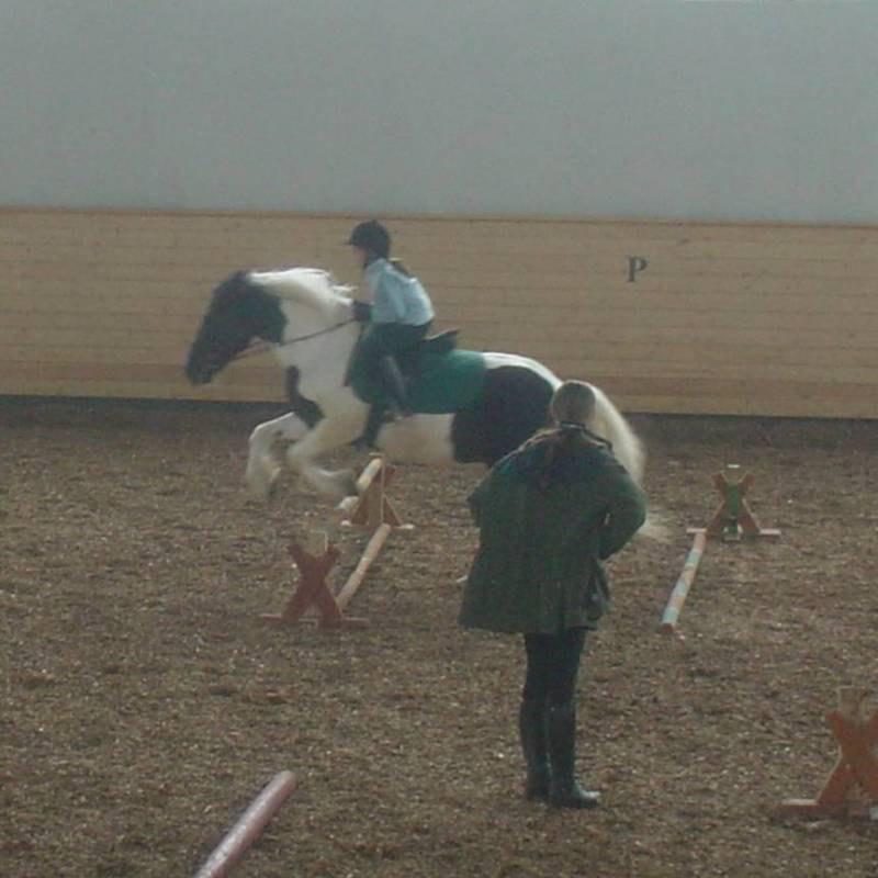 Это мой наипервейший прыжок во всей жизни!!! Мне лет 12... В Горках на Московском конезаводе номер1... Лошадка - Агрипина