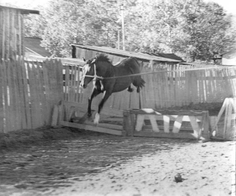 Вертикаль (Лордс-Ванда). 1989г.