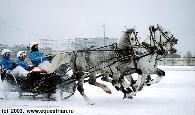 Зимний Чемпионат Русских Троек