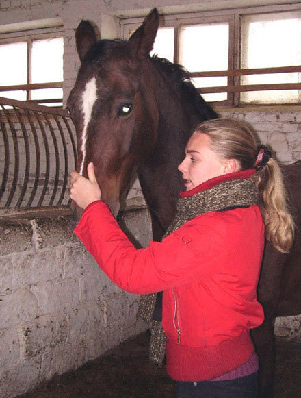 Такая замечательная лошадь!!!! :)