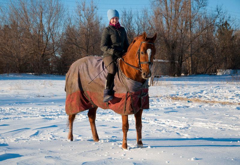 Зима пришла такая, какой ее не ждали) Ребус в шоке, как он осторожно работает по такому снегу :)