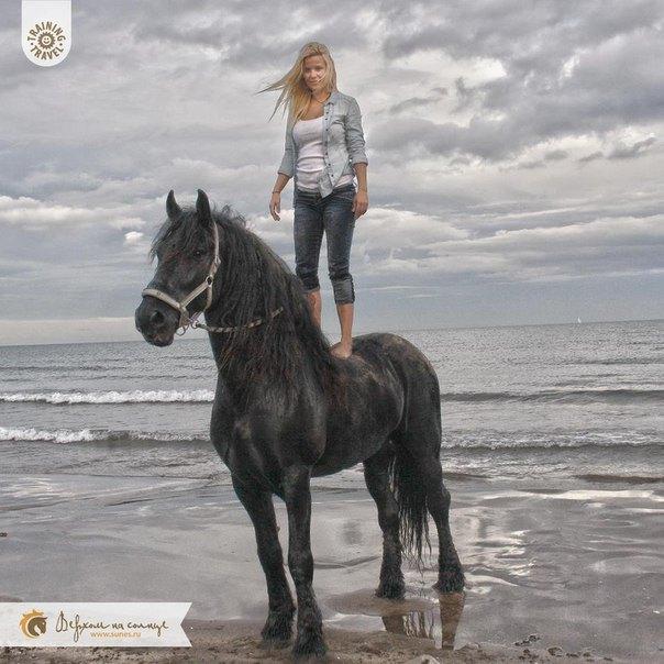 Купание лошадей в средиземном море - двойное удовольствие!