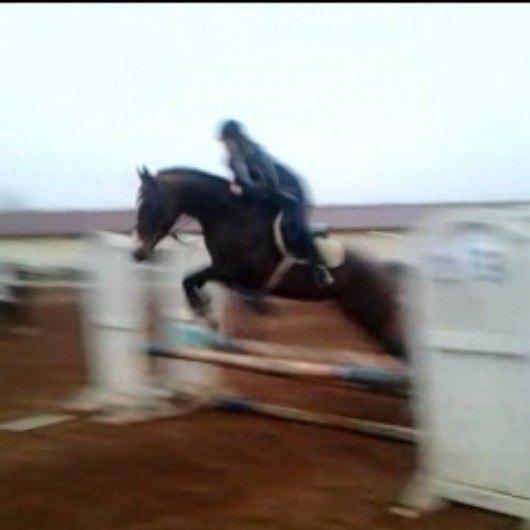 Елеубай-Рейн (Мушель-Ангара) сорри за качество, просто хотела поделиться, что ребенок начал прыгать) и неплохо