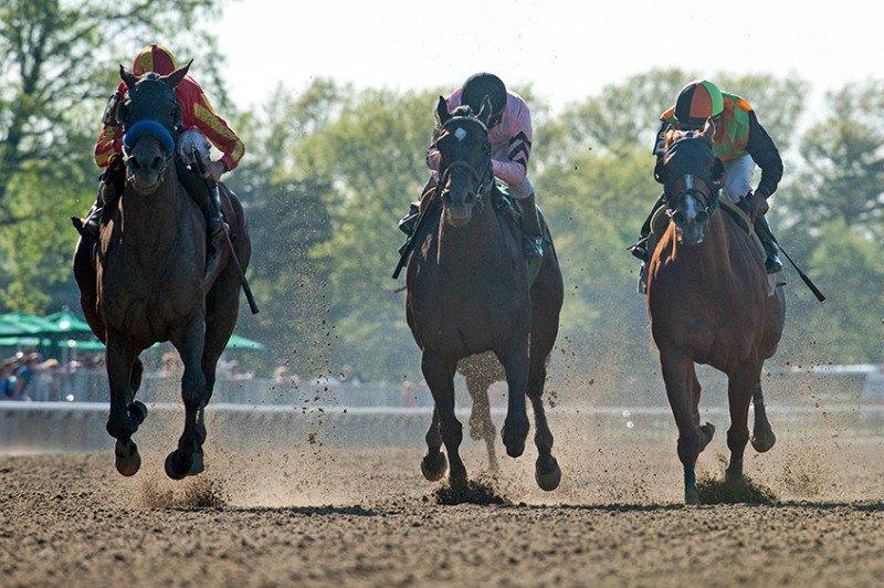 Ипподром Belmont Park, скачка Ruffian Stakes (Gr. 2) 2014 год.