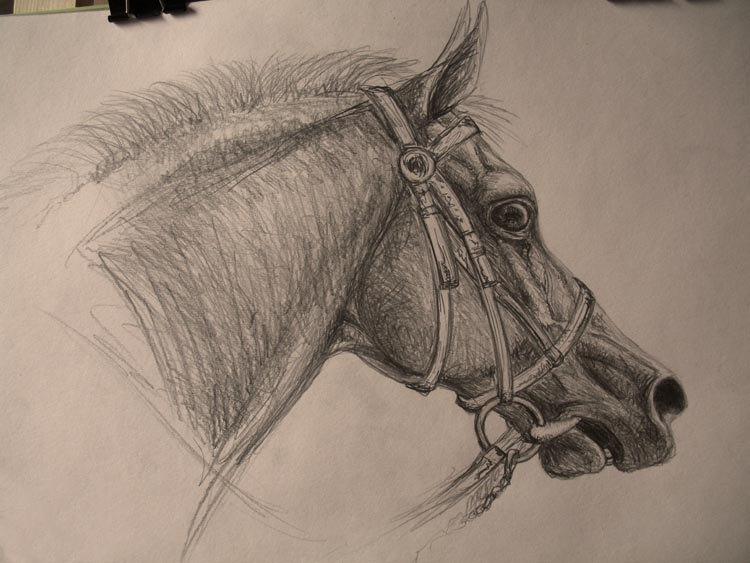 по фото Pony-Pastila