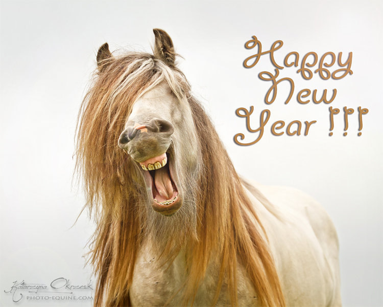 Happy New Year for all :)