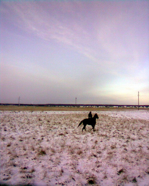 Мы с Онли в поле на рассвете