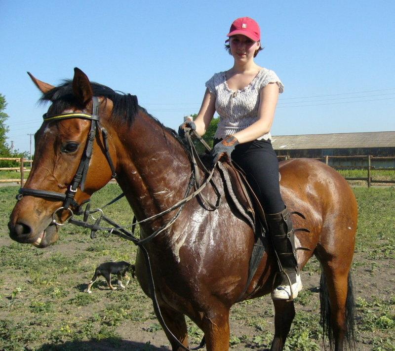 Вот так всегда, втолько втянешь в работу лошадь, так какое-то м... её продаёт... Да к тому же - цыганам((((