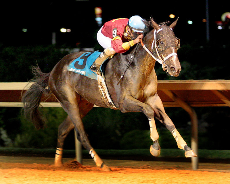 Ипподром Charles Town 2009 год, скачка Red Legend Stakes