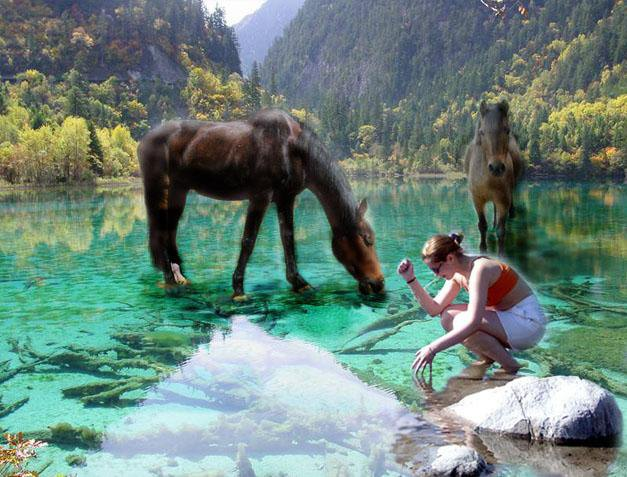 Две лошади и моя сестра. Яне очень умею работать в фотошопе, поэтому прошу строго не судить=))