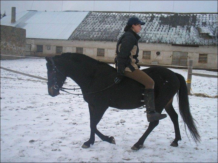 :) Так они и ехали с платца в конюшню.
