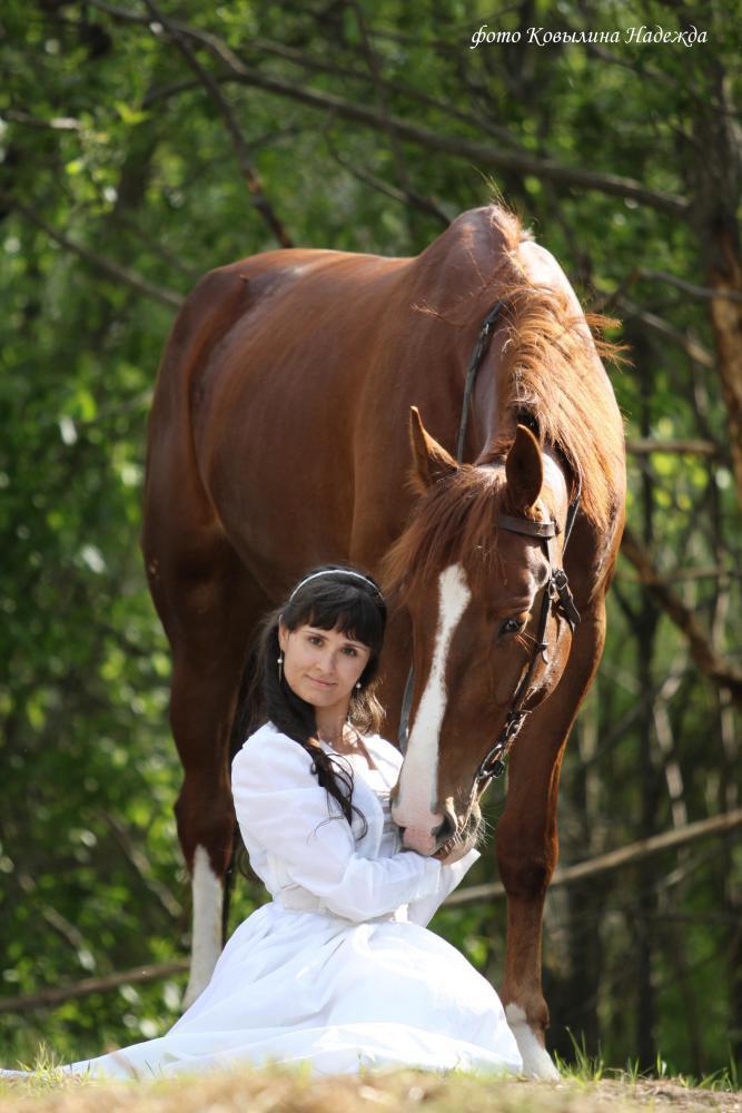 Девушка и ее лошадь