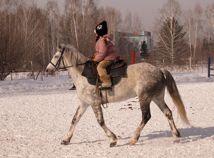 Недавно пришла к нам девочка, которую на лошадь посадили первый раз в 1,5 года. Держится достаточно уверенно, уже сама заводит лошадку - Сонечку в конюшню, участвует в расседлывании.
