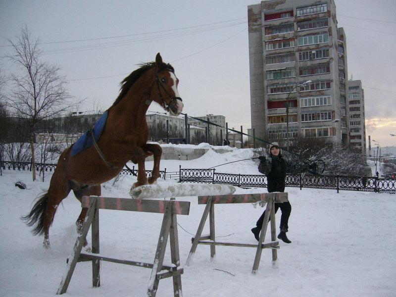 Зима 2007, моё последние пребывание в конюшне((