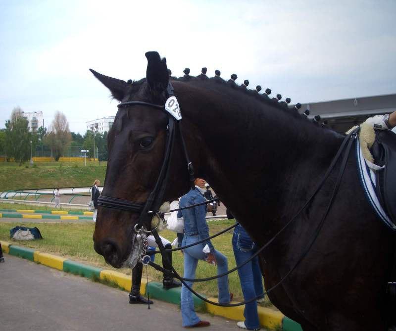 В Битце, 2007 г.