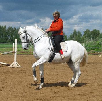 Белый Вася (Гарнир)