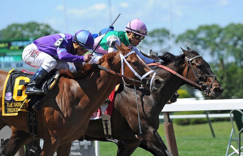 Ипподром Belmont Park 2014 год, скачка Ogden Phipps Stakes - Gr. 1