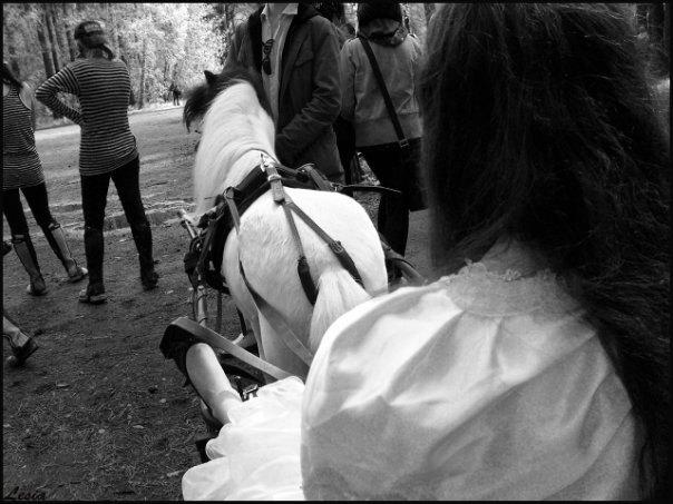 ..кони...