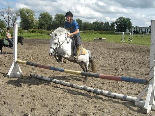 Конкур на пони
