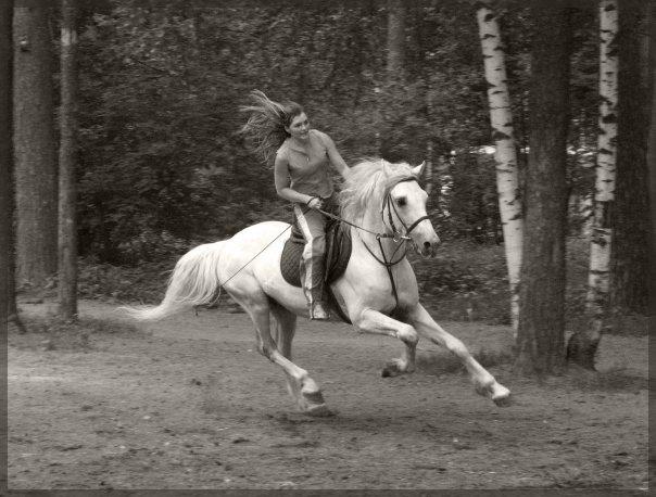 Конь бежит-земля дрожит!Мой любимый пучеглазик!
