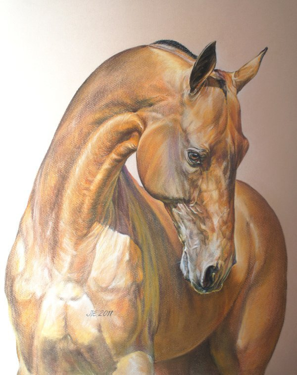 48х38 см пастельный рисунок лошади ахалтекинской породы по фото Екатерины Друзь