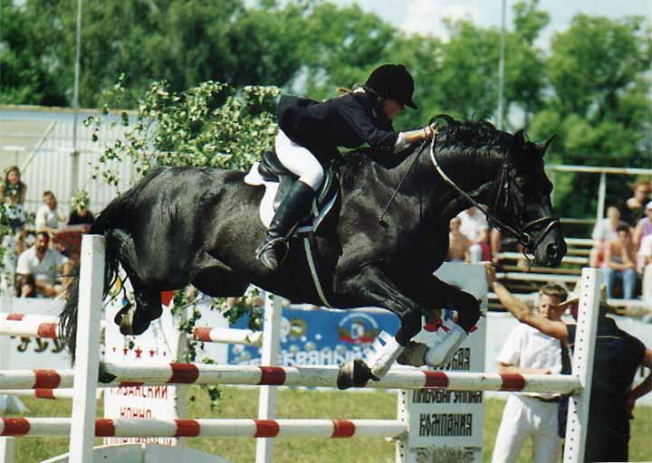 корона юрий кузнецов фото конный спорт видно