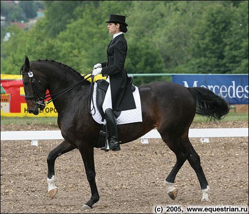 http://www.equestrian.ru/photos/photoreport2005/ch_r_d_kom/a_8577ce.jpg