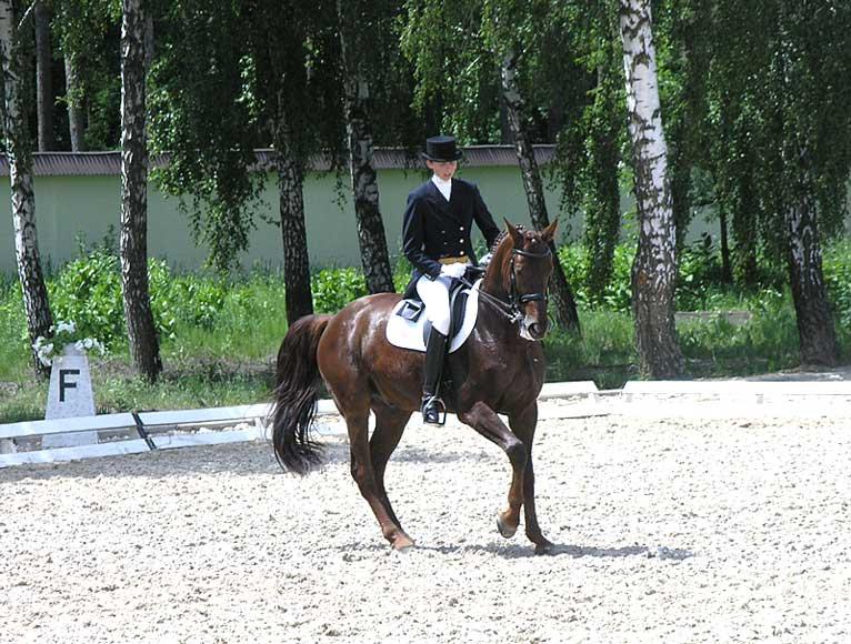 помощью юрий кузнецов фото конный спорт обследовали светлояр обнаружили