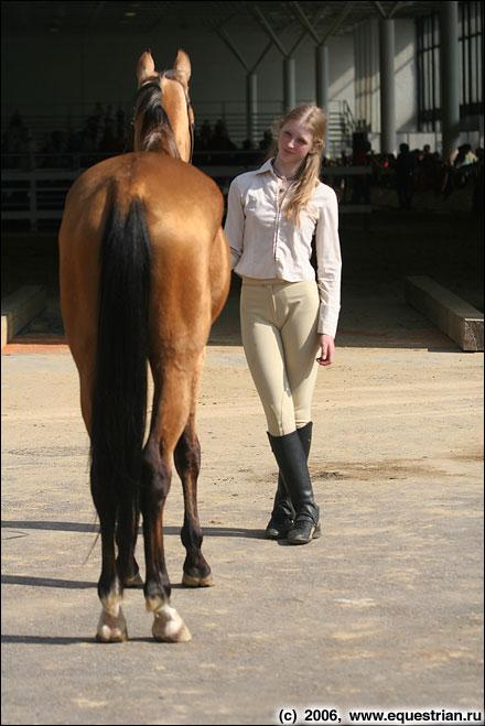 http://www.equestrian.ru/photos/photoreport2006/lenexpo/IMG_1062.jpg