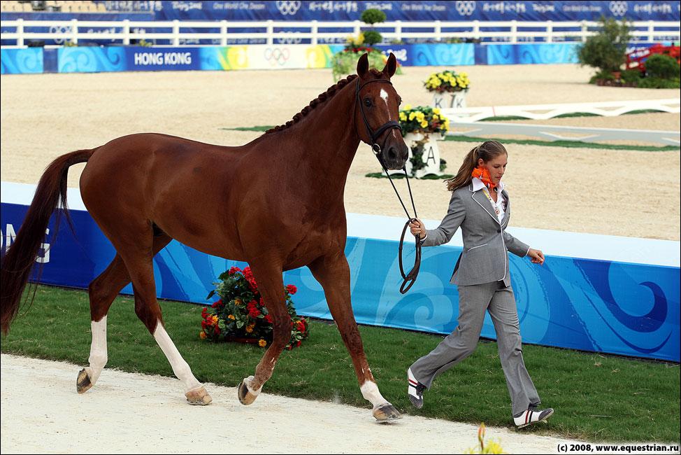 http://www.equestrian.ru/photos/photoreport2008/08_oi/dressage/vet_insp/KSHT0604_parzival_ned.jpg