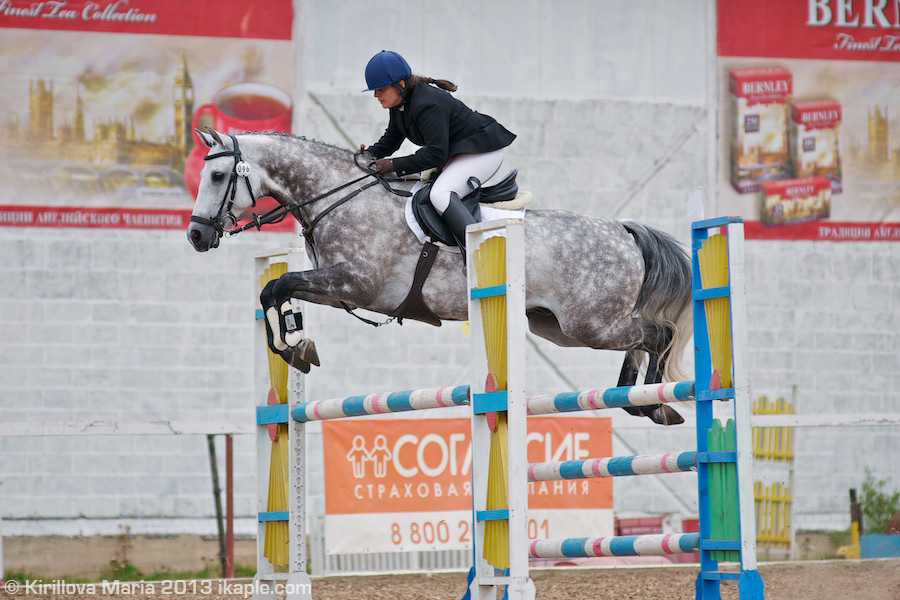 http://www.equestrian.ru/photos/photoreport2013/08_eventing_svechino/DSC_5233_Nabieva_Chabanak.jpg