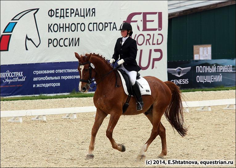 Конкурс федерация конного спорта россии