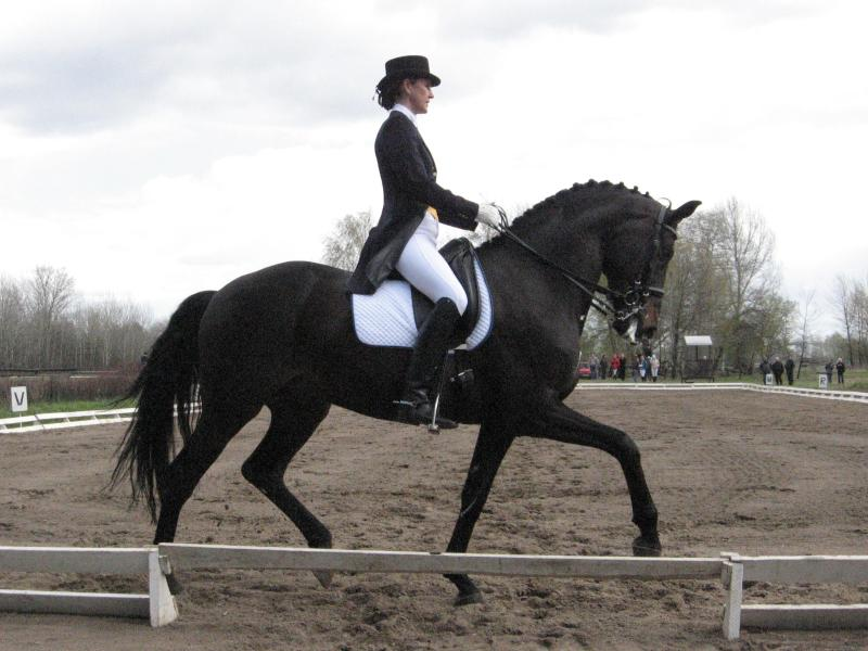 http://www.equestrian.ru/photos/user_photo/2007/4e4497a5.jpg