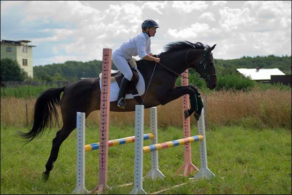 http://www.equestrian.ru/photos/user_photo/2007/56dddea6.jpg