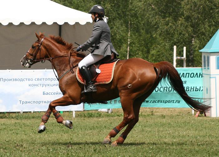 http://www.equestrian.ru/photos/user_photo/2007/588027be.jpg