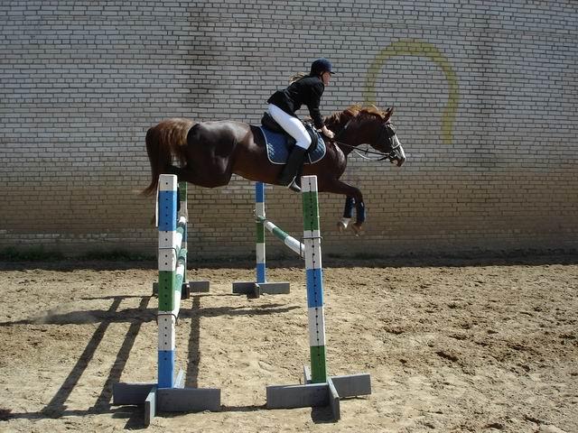 http://www.equestrian.ru/photos/user_photo/2007/cded27b9.jpg