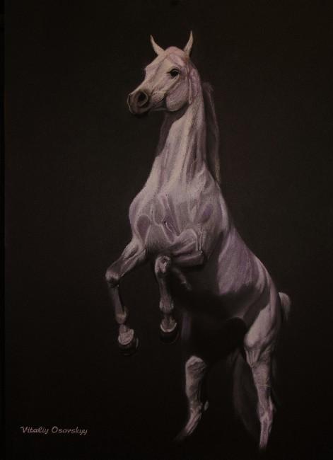 http://www.equestrian.ru/photos/user_photo/2007/edf572f1.jpg