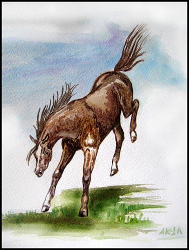 http://www.equestrian.ru/photos/user_photo/2008/4ebca0d6.jpg
