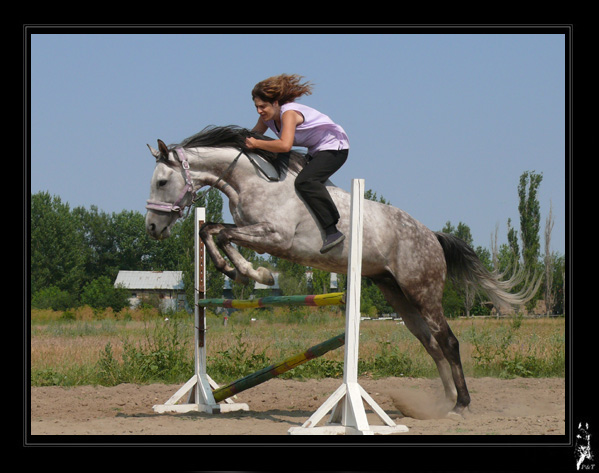 http://www.equestrian.ru/photos/user_photo/2008/5f0c0c39.jpg