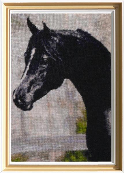 http://www.equestrian.ru/photos/user_photo/2008/714133ca.jpg
