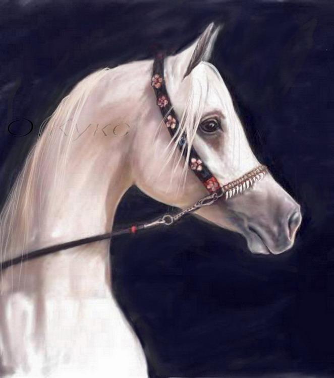 http://www.equestrian.ru/photos/user_photo/2008/7ddb5df6.jpg