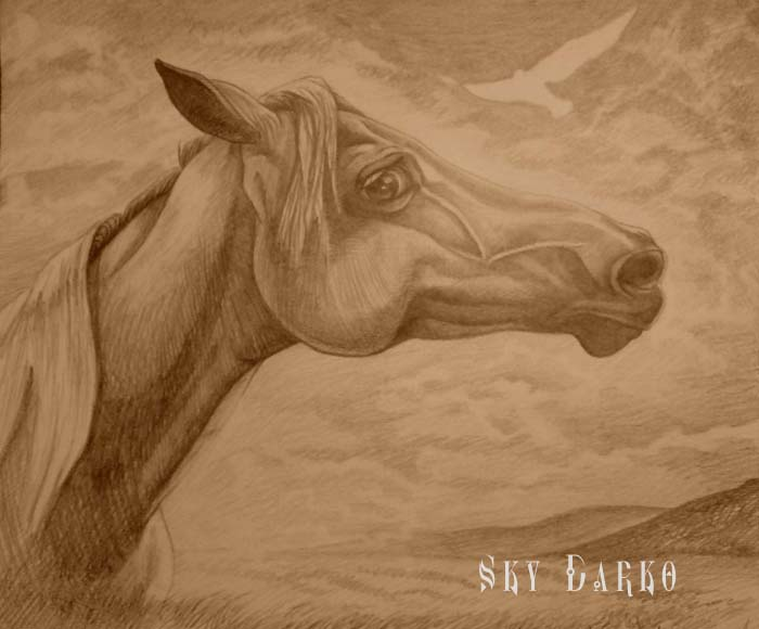К Чему Снится Копытами Бьет Лошадь