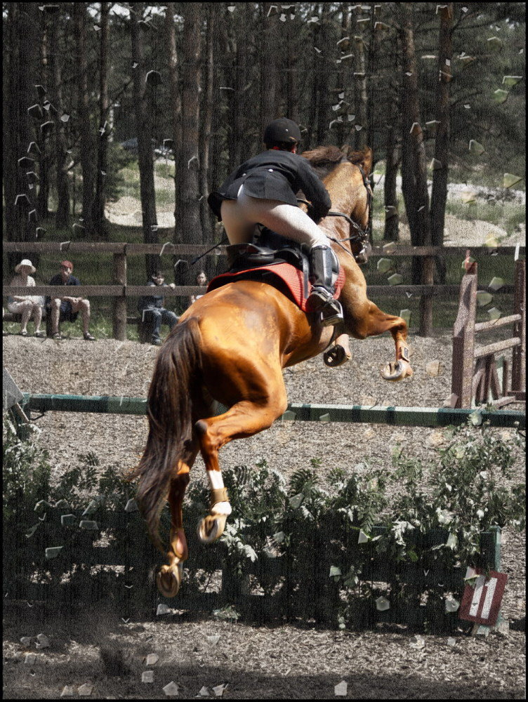 http://www.equestrian.ru/photos/user_photo/2008/966f771b.jpg