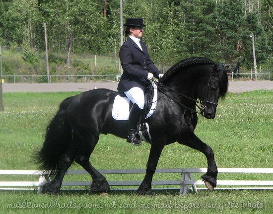 http://www.equestrian.ru/photos/user_photo/2008/96aadbd0.jpg