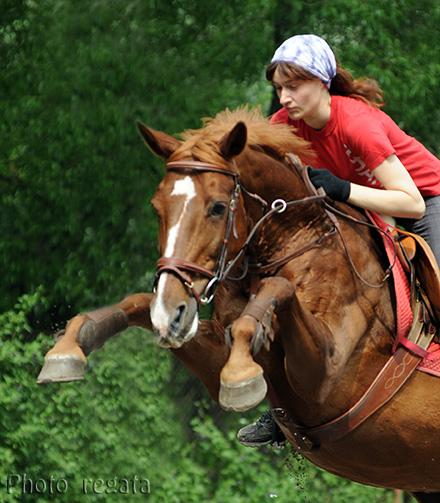 http://www.equestrian.ru/photos/user_photo/2008/bec16c1e.jpg