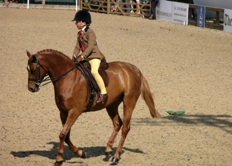 Royal Windsor Horse Show, UK