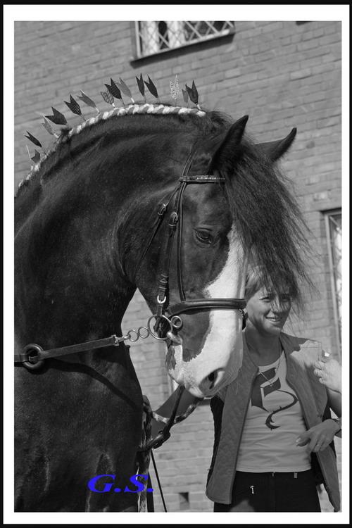 http://www.equestrian.ru/photos/user_photo/2008/f042f2d6.jpg
