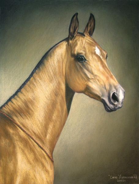 http://www.equestrian.ru/photos/user_photo/2009/064ea5b1.jpg
